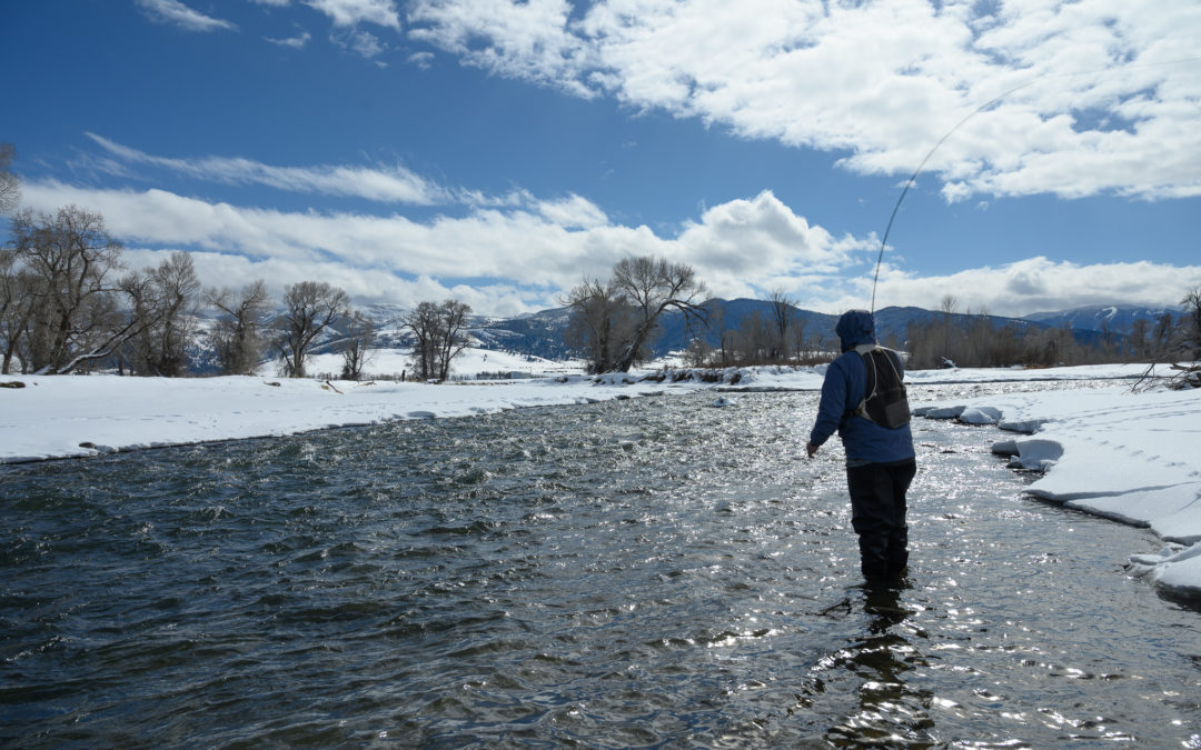 angler fly fishing on Montana's Gallatin River during the winter