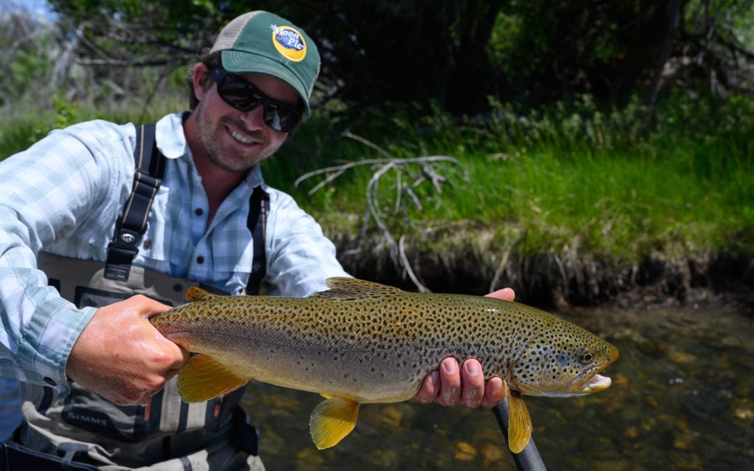July 2019 Montana Fly Fishing Forecast