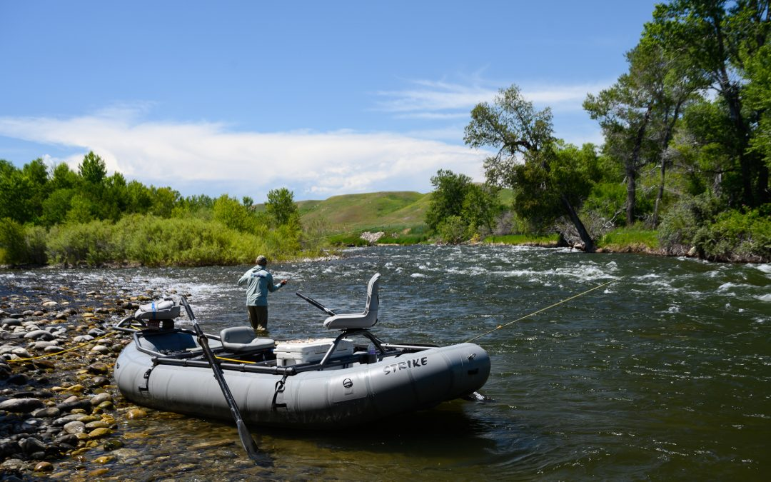 Guide to Summer Fly Fishing in Montana