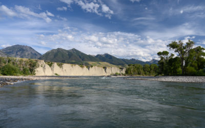 August 2019 Montana Fly Fishing Forecast