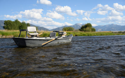Madison River Fly Fishing Tactics