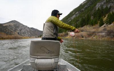 November 2019 Montana Fly Fishing Forecast