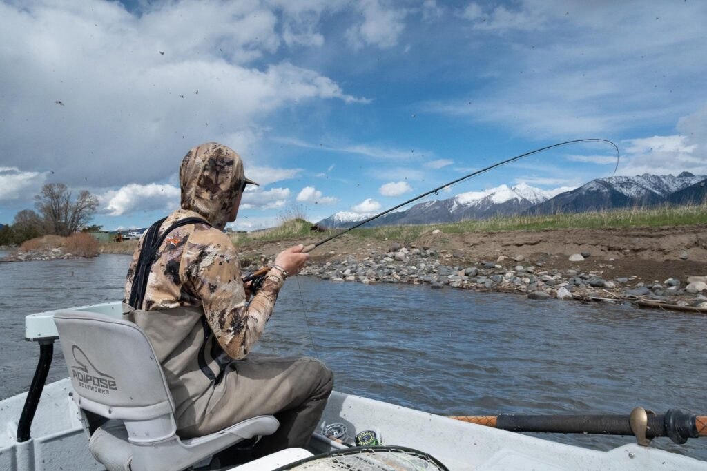 May fly fishing on the Yellowstone River