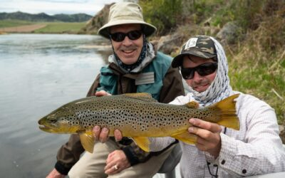 June 2020 Fly Fishing Forecast