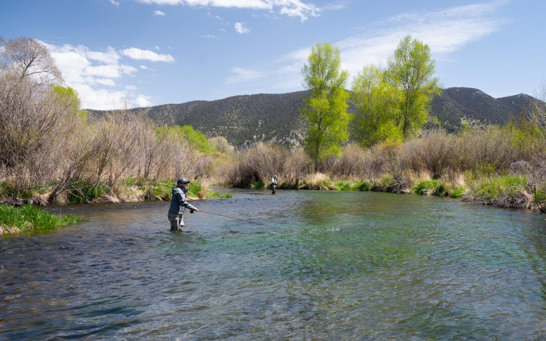 Anglers fly fishing in Montana