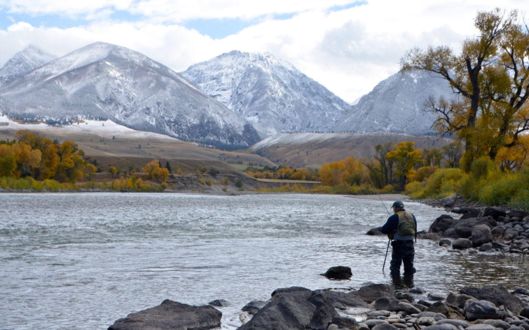 Yellowtone River Fall Fly Fishing Trips