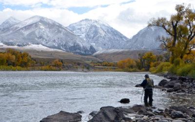 Yellowtone River Fall Fly Fishing Trips