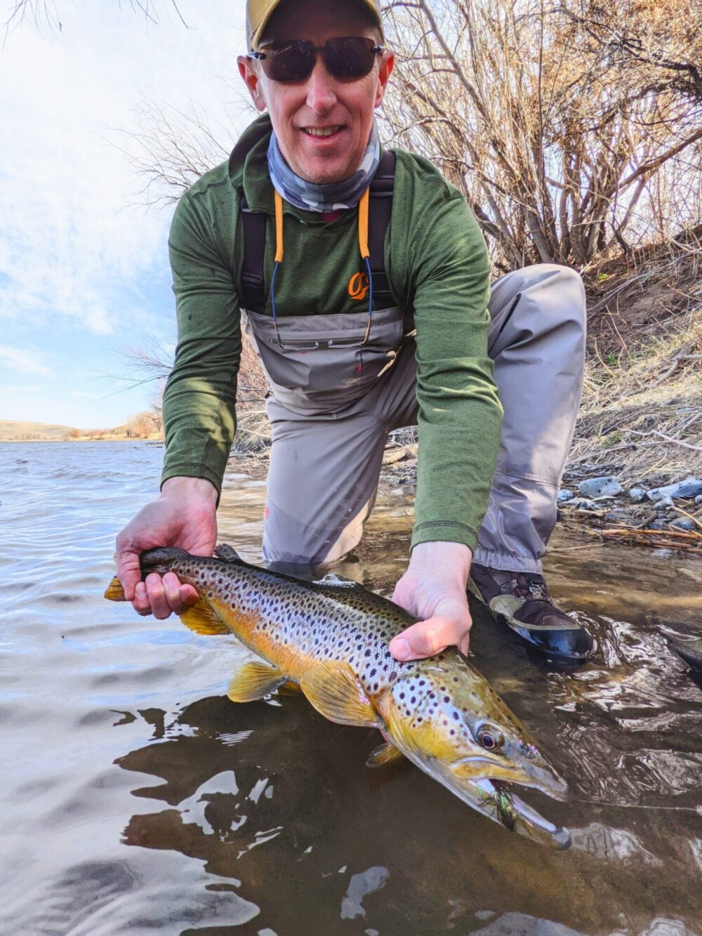 Angler with a Missouri River Brown trout in April