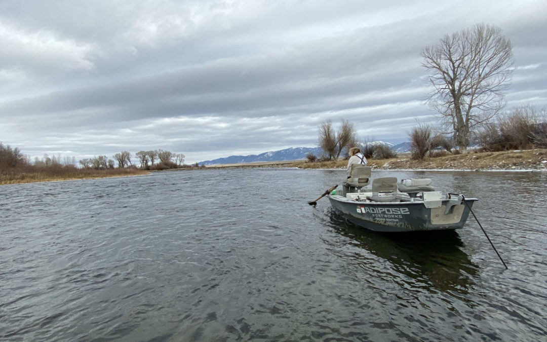Bozeman, MT Fly Fishing Report 11/15/19