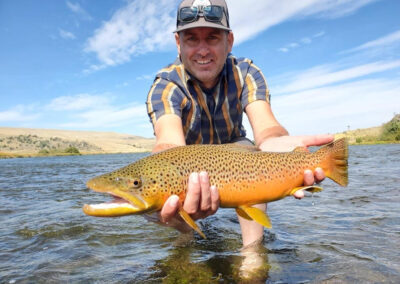 Madison River fall brown trout