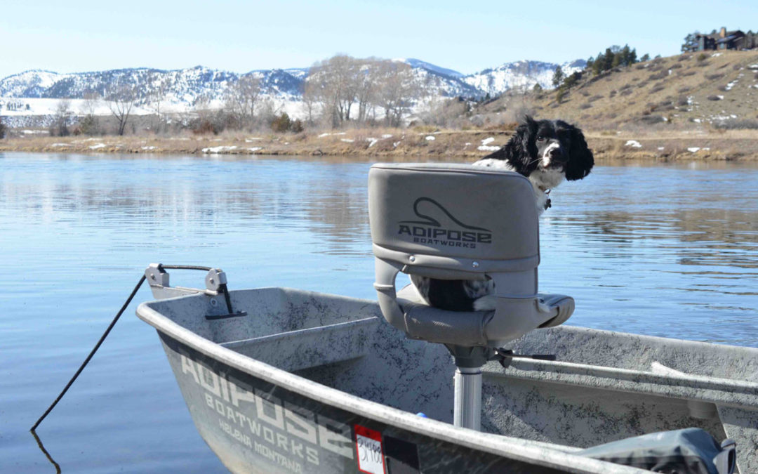 Missouri River Winter Fly Fishing Trips