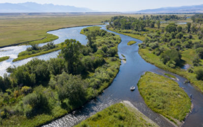 Bozeman, Montana July 2018 Fly Fishing Forecast