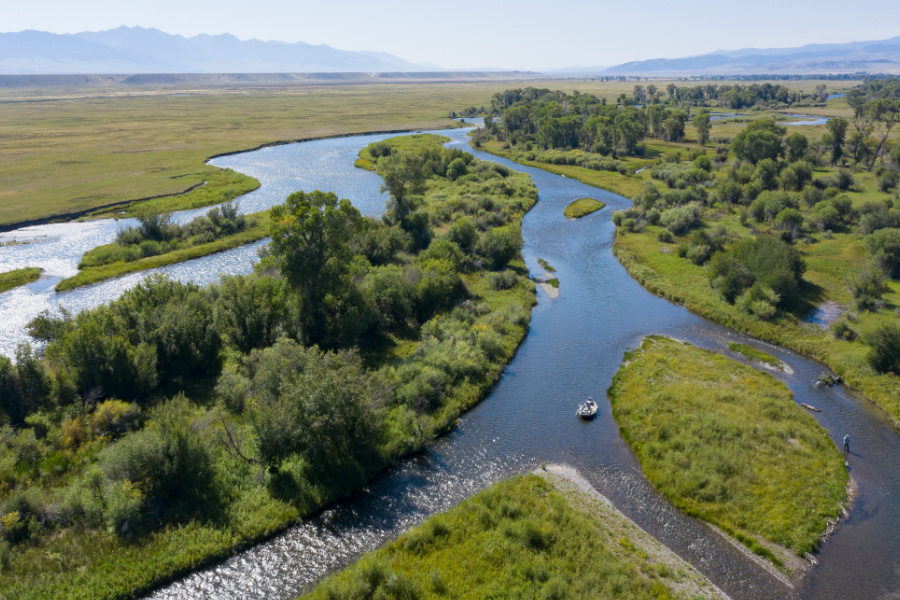 Madison River Fly Fishing Guides, Trips, and Outfitting