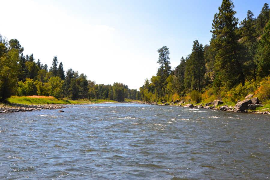 Upstream View of Montana's Stillwater River
