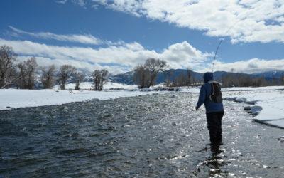 Winter 2019 Bozeman Fly Fishing Trips