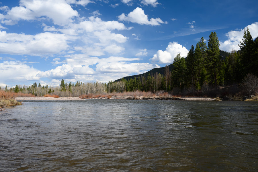 blackfoot-river-spring-fly-fishibng