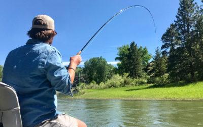 June 2019 Montana Fly Fishing Forecast