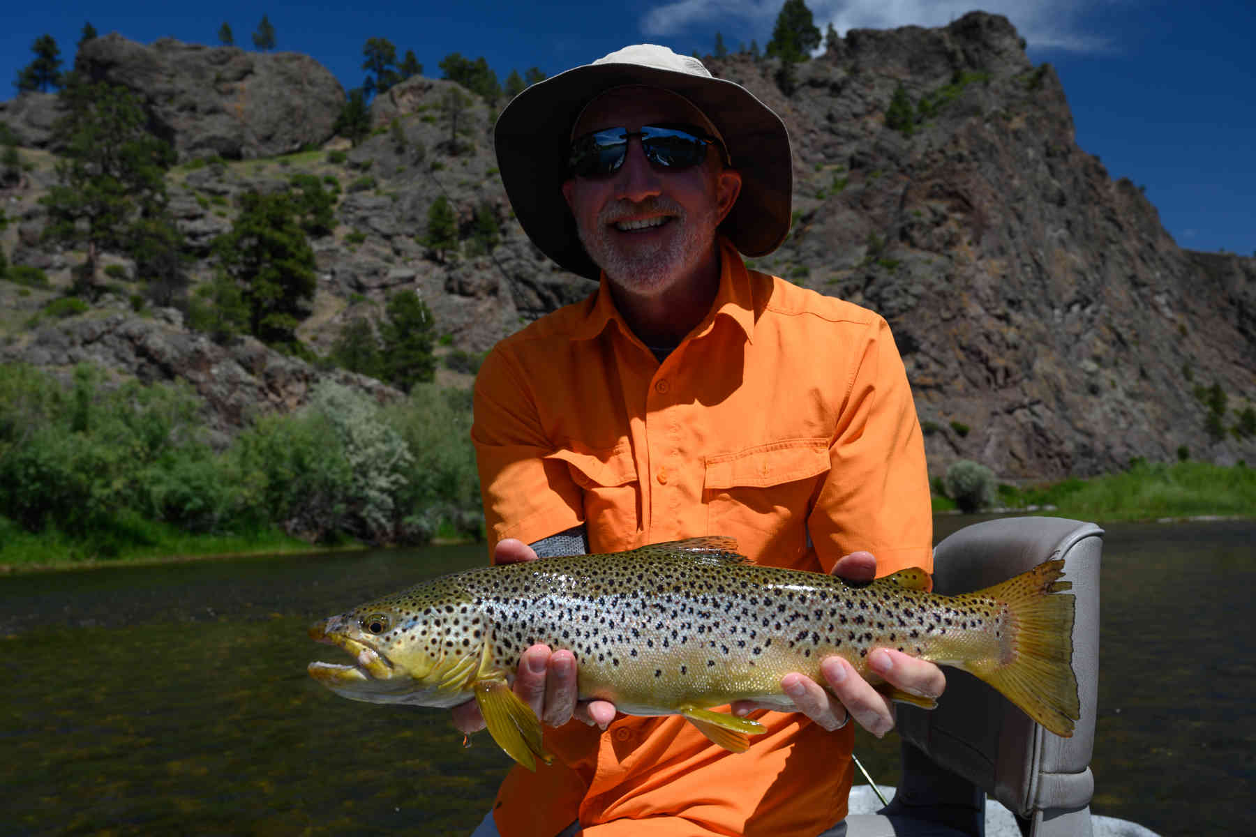 dry-fly-missouri-river-brown-trout