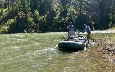Bozeman, MT Fly Fishing Report 6/20/19