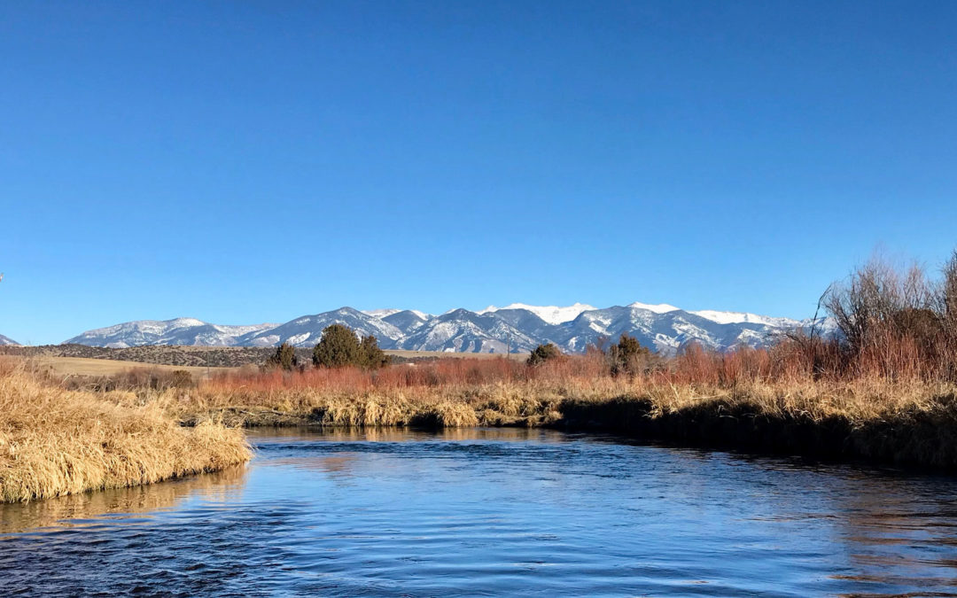 5 Spots to Fly Fish in Bozeman, MT