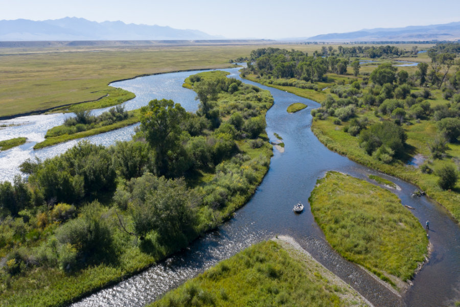 Summer fly fishing on Montana's Madison River