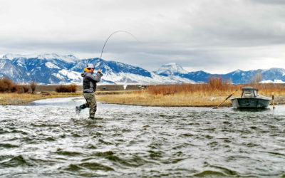 Bozeman, MT Fly Fishing Report 11/6/18