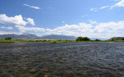 Bozeman, MT Fly Fishing Report 7/5/18