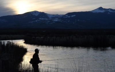 Winter Spring Creek Fly Fishing Trips