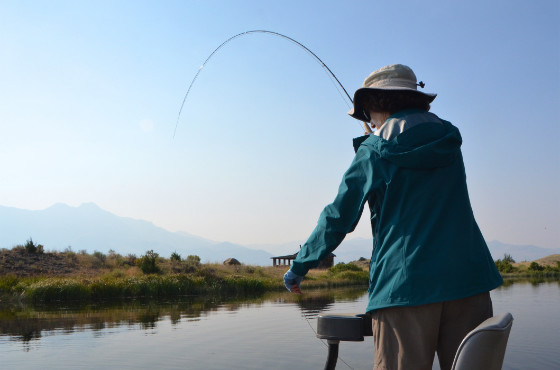 Angler fly fishing private lake in Montana