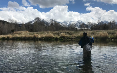 April Fly Fishing in Montana