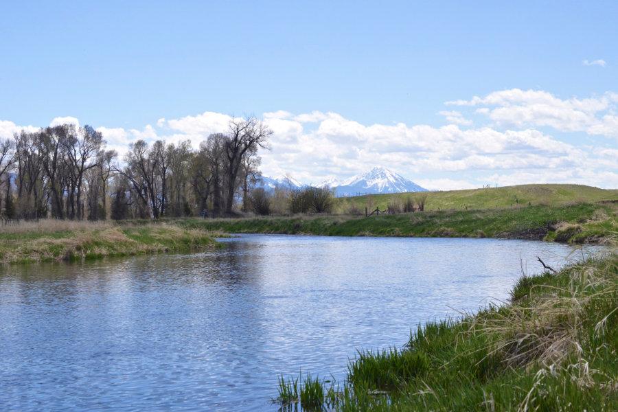 Depuy's Spring Creek in Paradise Valley