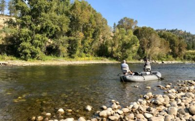 Bozeman, Montana Fly Fishing Report 5/23/18