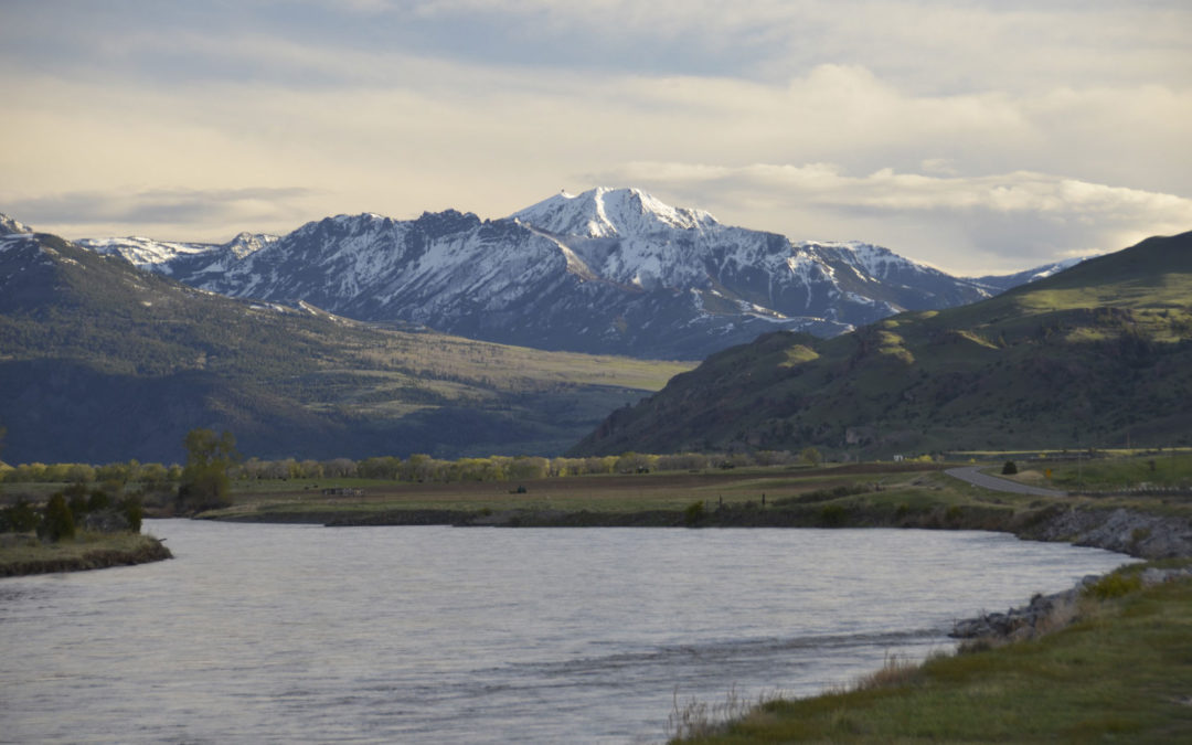 Yellowstone River Spring Fly Fishing Trips